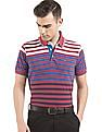 Arrow Sports Striped Regular Fit Polo Shirt